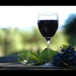 How I Made Wine From Fresh Grapes I Grew at Home