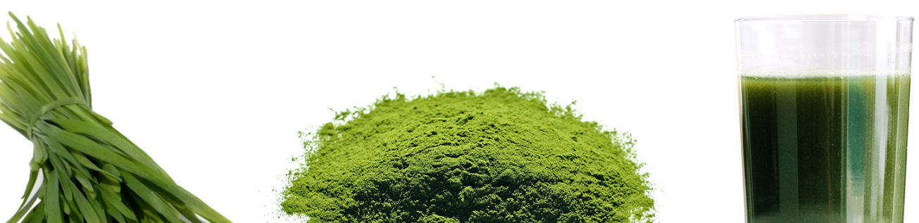 Green superfood powder drink