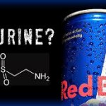Taurine Benefits