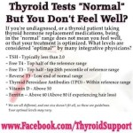 An Important Note About Thyroid Hormone Levels