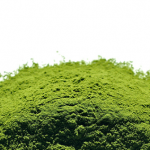 Green Superfood Powder Benefits: Why You Should Drink Your Greens